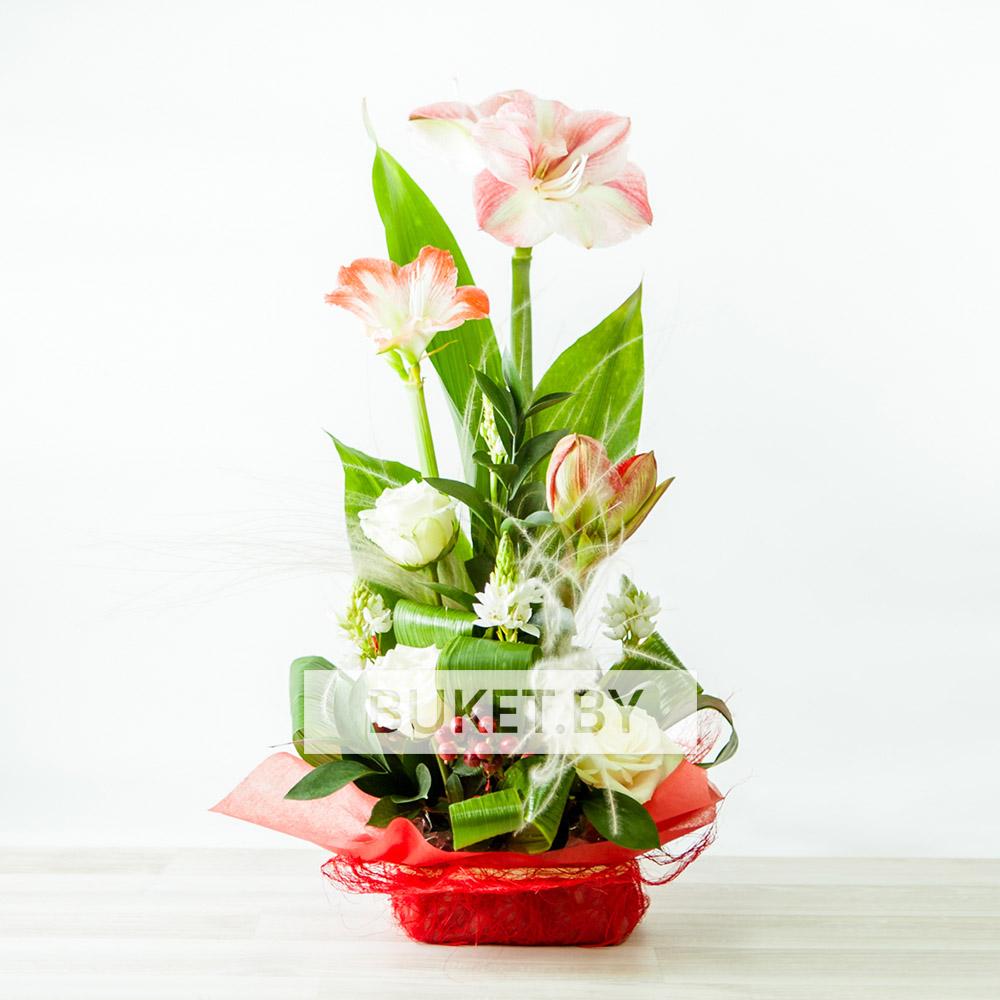 Композиция из роз с амариллисами