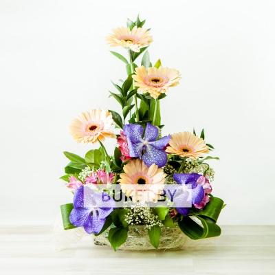 Композиция с герберой и орхидеей Ванда